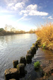 blek flod Royaltyfri Fotografi