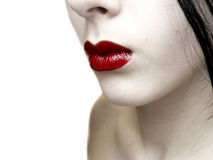 blek red Royaltyfri Foto