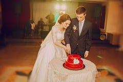 blemished παλαιός ακόμα μαζί γάμος ζευγών κέικ Στοκ Φωτογραφίες