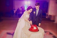 blemished παλαιός ακόμα μαζί γάμος ζευγών κέικ Στοκ Φωτογραφία