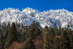 Blend of autumn and winter in the mountains difining change of seasons Stock Photos