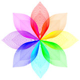Blend gradient. Multi color flower on a white background Royalty Free Stock Image