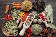 Blend of spices Stock Photos