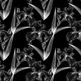 blenden Aquarellmalerei Tapete Nahtloses Muster Lizenzfreie Stockfotografie