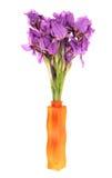 Blenden in einem Vase. Lizenzfreie Stockfotografie