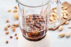 Blender with soaked hazelnuts for making nut milk royalty free stock photos