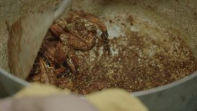 Blending spices into crab claw dish inside a pan. A slow-motion, extreme closeup shot of preparing a Vietnamese-style salted crab claw dish Cua Rang Muoi inside stock footage