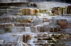 Blendungs-Farbe bei Mammoth Hot Springs in Yellowstone Nationalpark Lizenzfreies Stockfoto