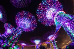 Blendungs-helle Show an Singapur-Gärten durch die Bucht Stockbild