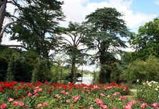 Blenheim宫殿玫瑰园在伍德斯托克,英国 免版税库存图片