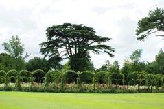Blenheim-Palastrosengarten in England Lizenzfreie Stockbilder