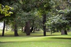 Blennerhassett trädgårdar Arkivbild