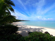 Aitutaki Cook Islands Palm Beach Royalty Free Stock Images
