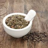 Blessed And Milk Thistle Herb Stock Images