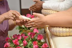 Blessed water at Thai wedding ceremony Royalty Free Stock Photography