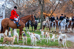 Blessing of the hounds. Shaker Village of Pleasant Hill - November 24: Traditional ceremony of blessing of the hounds and fox hunt in Shaker Village of Pleasant Stock Images