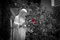 Blessing Mother Mary with Red Roses. Mother Mary Blessing with Red Roses in black and white background Royalty Free Stock Photography