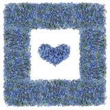 Bleu adoucissez le cadre d'isolement Image stock