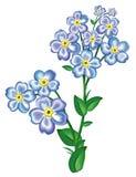 Bleu de fleur faussaire-je-pas illustration de vecteur