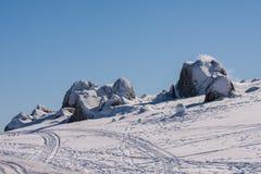 Bleu de galopin, montagne de neige dans NSW/AUSTRALIA photographie stock libre de droits