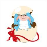 Bleu de lapin de Pâques Photographie stock libre de droits