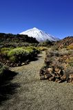 Bleu de Teide Photos stock
