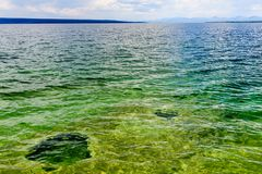 Green colored lake Yellowstone stock photography