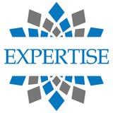 Bleu Grey Circular d'expertise Photos stock