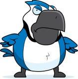 Bleu Jay Angry de bande dessinée illustration de vecteur