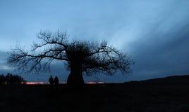 Bleu romantique de strom de coucher du soleil de l'Allemagne d'arbre images libres de droits