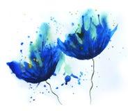 Bleuet d'aquarelle Image stock