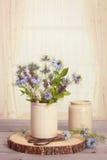 Bleuets dans des pots en céramique Images libres de droits