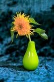 Blühen Sie Bildsonnenblumen in einem Vase auf einem blauen Hintergrund Lizenzfreies Stockfoto