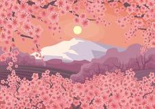 Blühende orientalische Kirsche und Berg Lizenzfreies Stockfoto