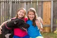 Bliźniaczy siostra szczeniaka zwierzęcia domowego pies i Great dane bawić się Fotografia Royalty Free