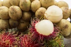 Bliźniarki langsad owocowy tropikalny słodki smakowity je Zdjęcie Royalty Free