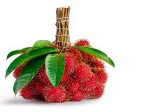 Bliźniarki owocowe z liściem Obrazy Royalty Free