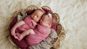 Bliźniak siostry nowonarodzone w cewieniu i w koszu Obraz Stock
