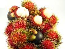 Bliźniarka mangostanu tropikalna owoc Asia Obraz Royalty Free