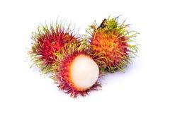 Bliźniarki owoc w plantaci Zdjęcie Royalty Free