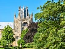 Blick der Kathedrale von Ely hinter den Bäumen Stockfotos