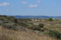 Blick des Apulian Lizenzfreies Stockbild