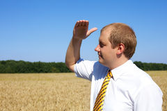Blick des jungen Mannes auf Horizont des Feldes Stockbilder