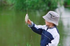 Blick des kleinen Jungen auf die abgefangenen Fische Stockfotos