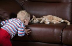 Blick des kleinen Jungen und der Katze Stockfotografie