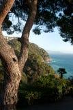Blick des Meeres in Rapallo Lizenzfreie Stockfotografie