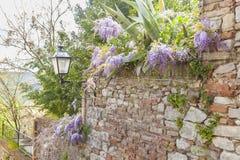 Blick eines typischen italienischen Dorfs Lizenzfreies Stockbild