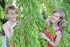 Blick mit zwei jungen Frauen wegen der Weidenniederlassungen Lizenzfreie Stockfotos