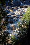 Blicken durch Bäume, zum des Flusses anzusehen Lizenzfreies Stockfoto