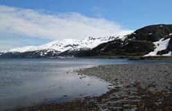 Blicken in Richtung Whittier Alaska am Sommer Lizenzfreie Stockfotografie